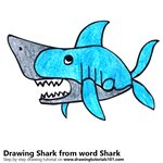 How to Draw a Shark from word Shark