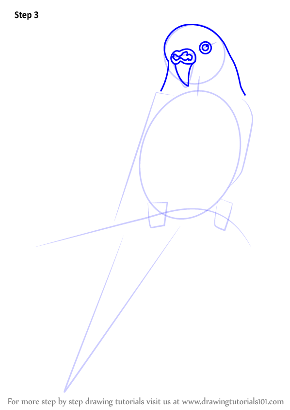 how to draw angry birds step by step for kids