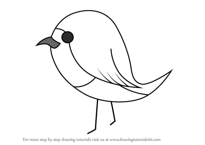 Learn how to draw robin bird for kids birds for kids step by step drawing tutorials