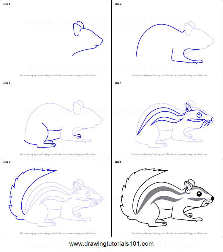 How To Draw A Cartoon Chipmunk Printable Step By Step Drawing Sheet