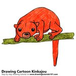 How to Draw a Cartoon Kinkajou