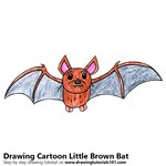 How to Draw a Cartoon Little Brown Bat