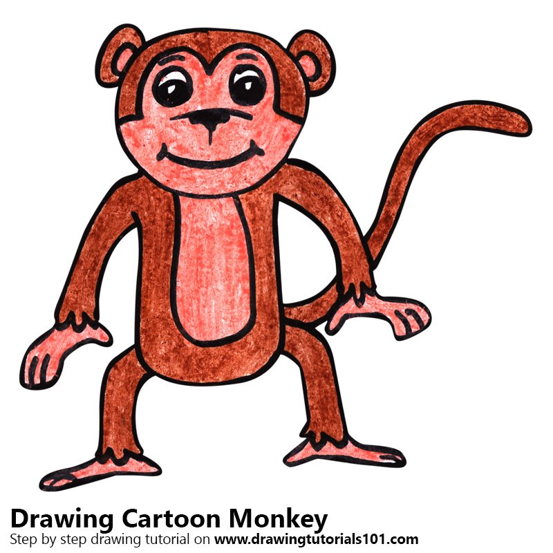 Learn How To Draw A Cartoon Monkey Cartoon Animals Step By Step Drawing Tutorials