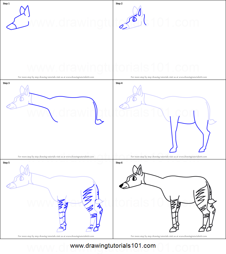 How to draw a cartoon okapi printable step by step drawing for Okapi coloring page