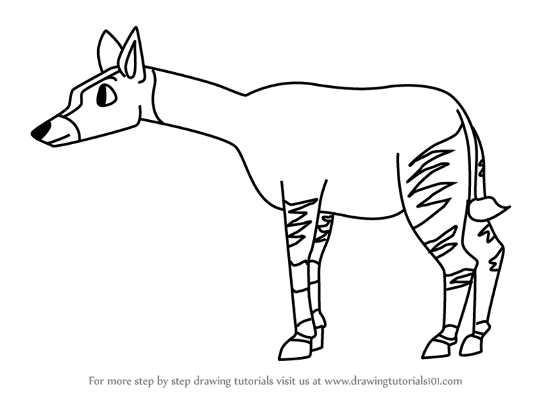 Step By Step How To Draw A Cartoon Okapi