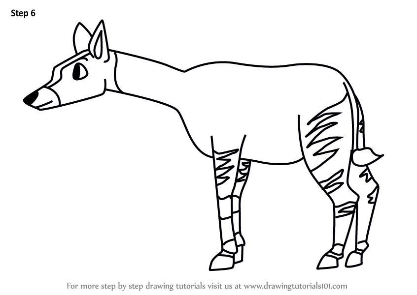 Learn how to draw a cartoon okapi cartoon animals step for Okapi coloring page
