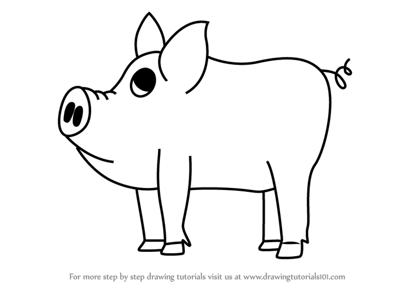 Learn How to Draw a Cartoon Pig (Cartoon Animals) Step by ...   800 x 566 png 52kB