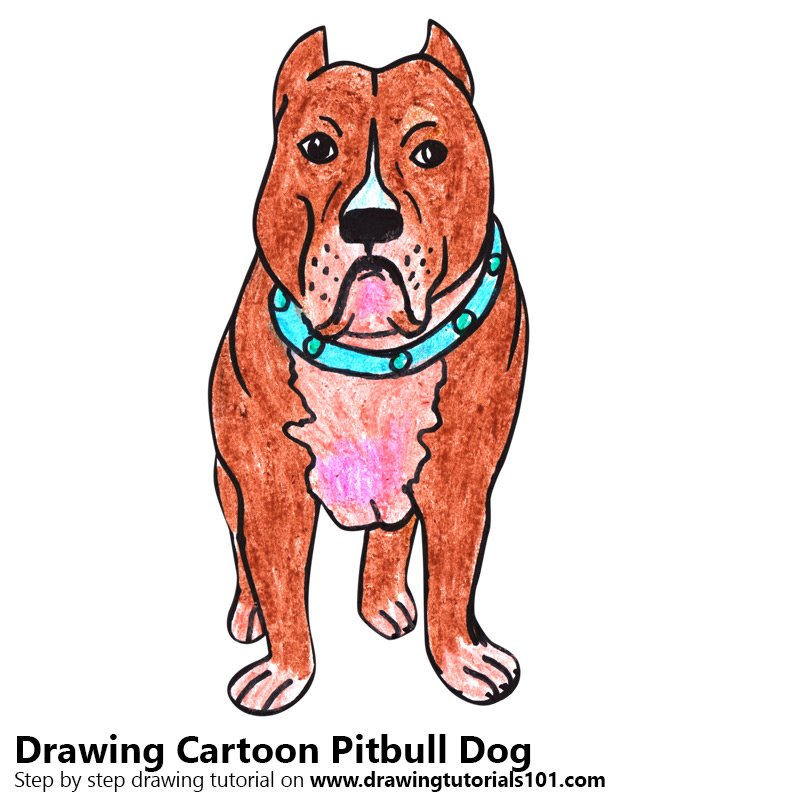 Step By Step How To Draw A Cartoon Pitbull Dog