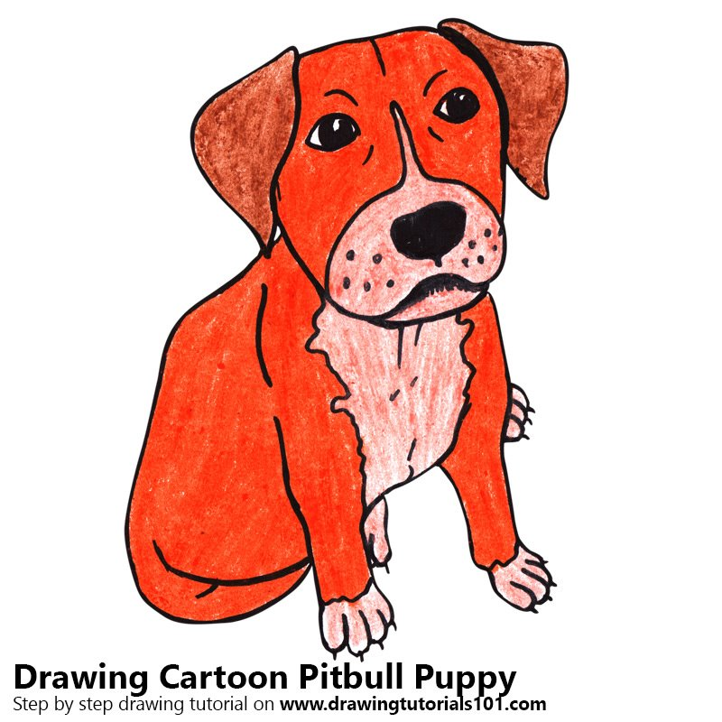 Cartoon Pitbull Puppy Color Pencil Drawing