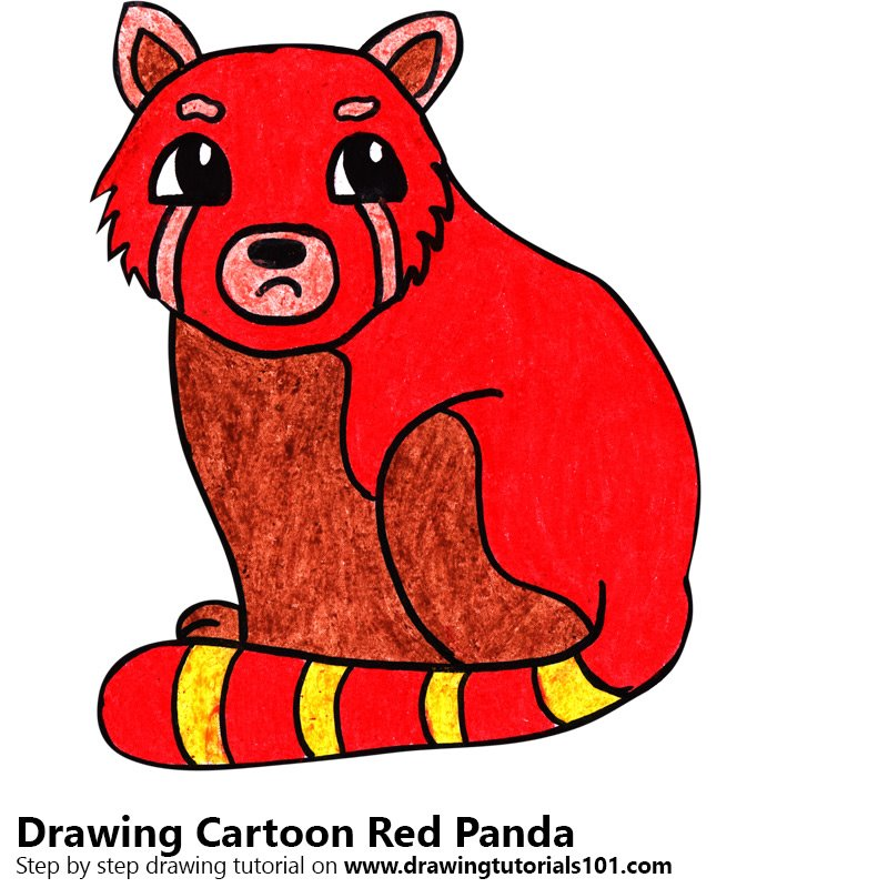 Learn How To Draw A Cartoon Red Panda Cartoon Animals Step By Step