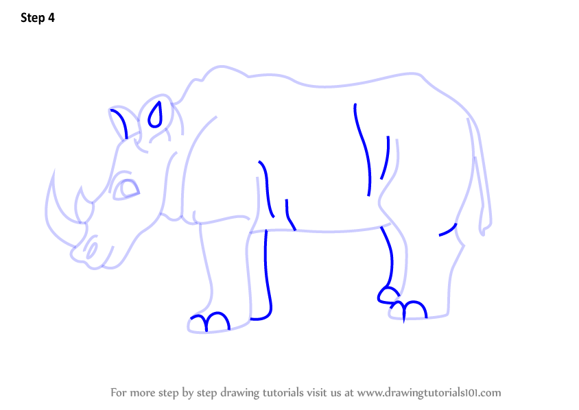 how to draw a rhinoceros beetle step by step