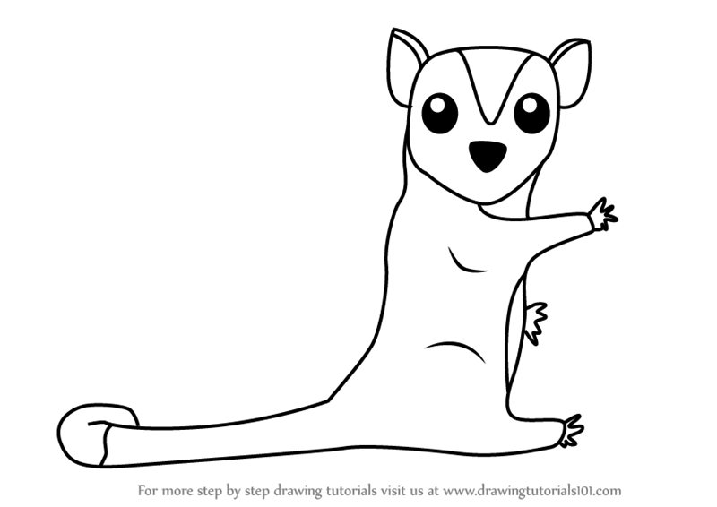 How to Draw a Cartoon Sugar Glider