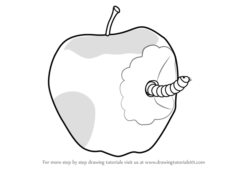 Learn How To Draw An Apple With Worm Fruits For Kids Step By Step