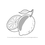 How to Draw Citrus Fruit for Kids