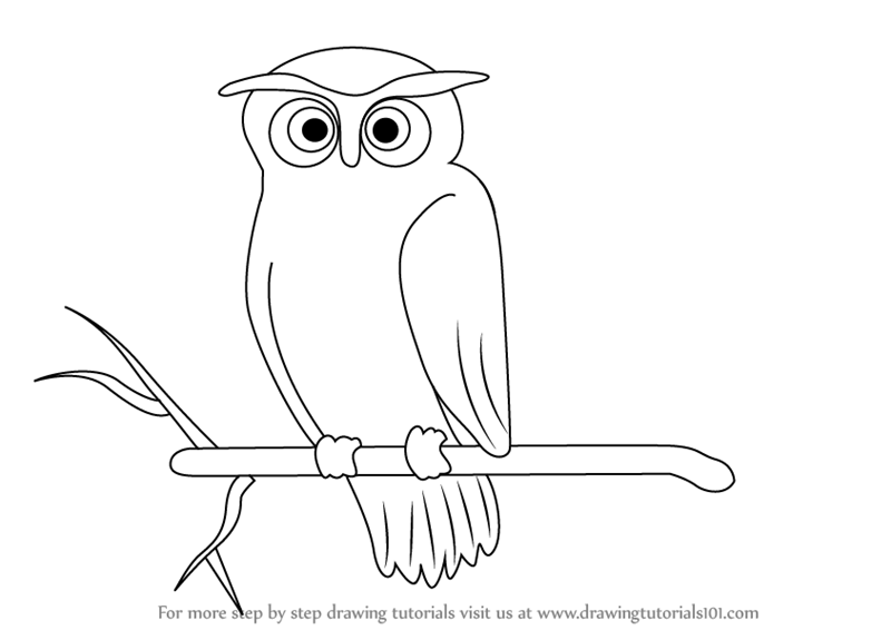 Learn how to draw a scary owl halloween step by step for Draw an owl in two steps