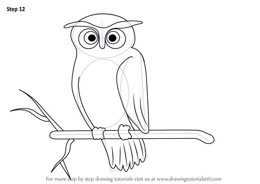 Learn how to draw a scary owl halloween step by step for Crazy stuff to draw