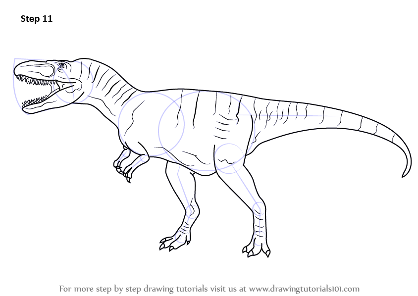 Learn How to Draw an Albertosaurus