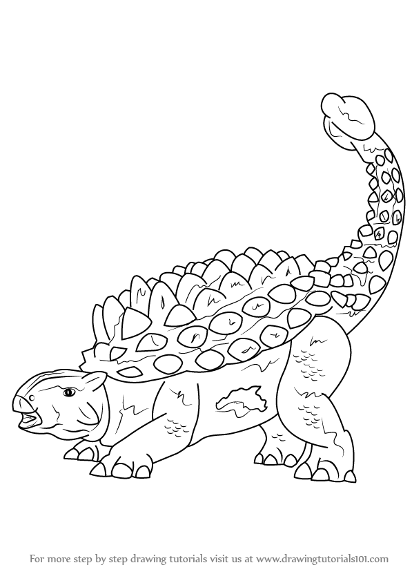 Gallery For gt Ankylosaurus Drawing