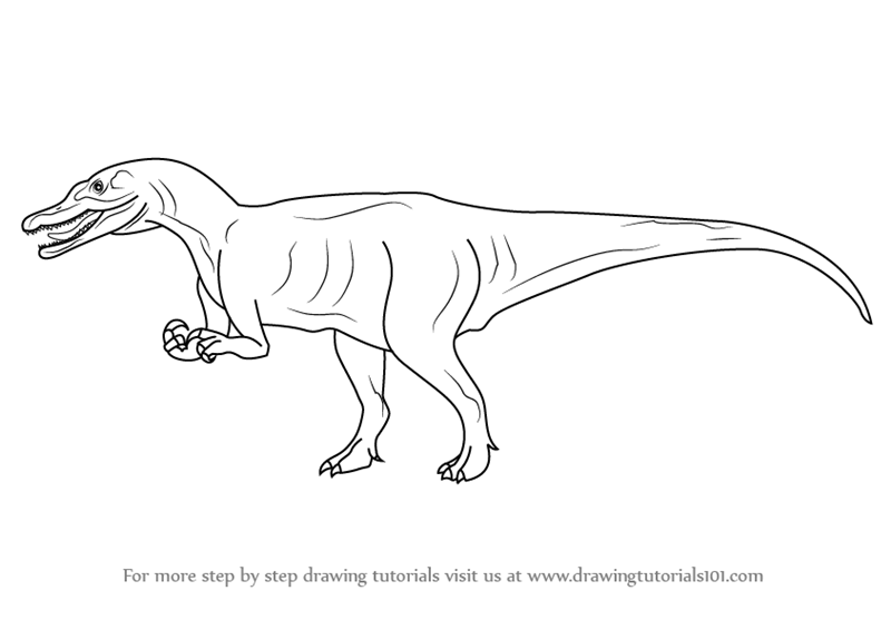Learn how to draw a baryonyx dinosaurs step by step for Baryonyx coloring pages