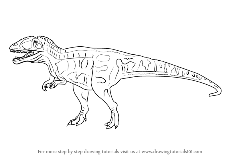Learn how to draw a carcharodontosaurus dinosaurs step for Carcharodontosaurus coloring page