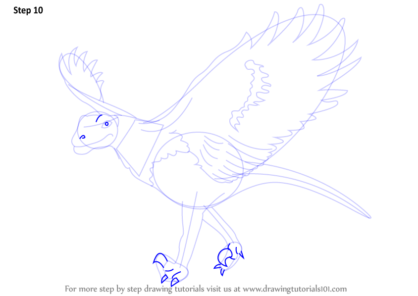 step by step how to draw a dino bird. Black Bedroom Furniture Sets. Home Design Ideas