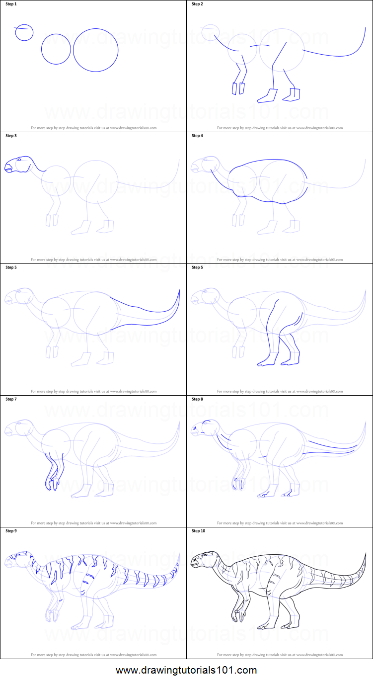 How to draw a iguanodon printable step by step drawing for Iguanodon coloring page