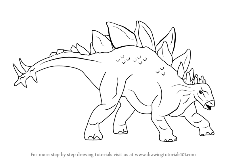 How to draw stegosaurus dinosaur