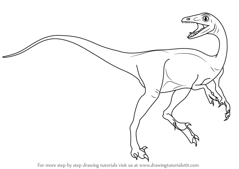 Learn how to draw a troodon dinosaurs step by step for Troodon coloring page