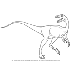 How to Draw a Troodon
