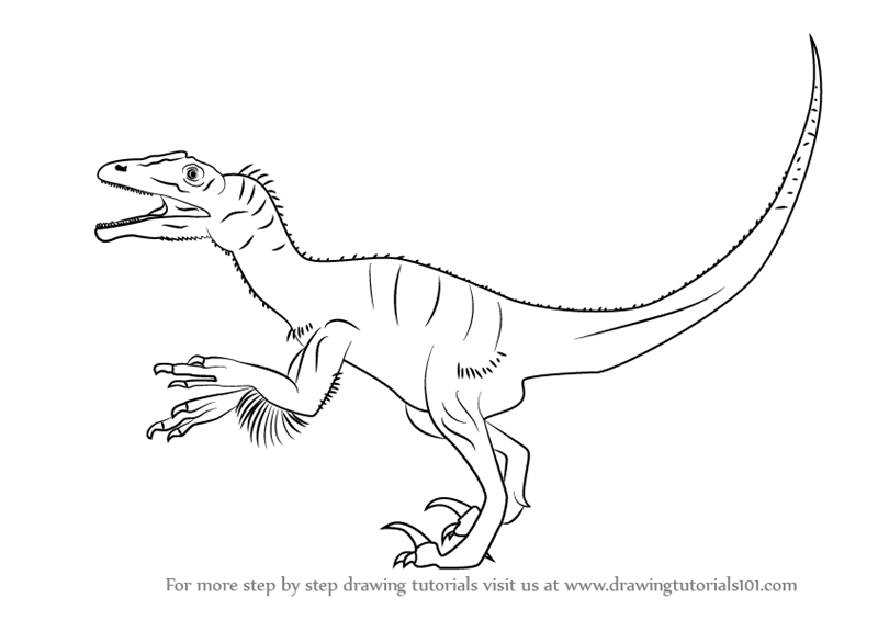 dinosaurus utah raptor coloring pages - photo#14