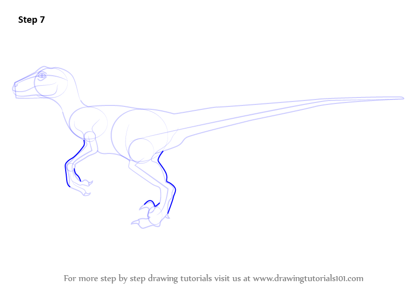learn how to draw a velociraptor dinosaur dinosaurs step by step drawing tutorials. Black Bedroom Furniture Sets. Home Design Ideas