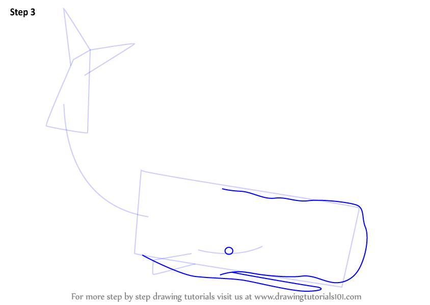 Step By Step How To Draw Moby Dick Drawingtutorials101 Com