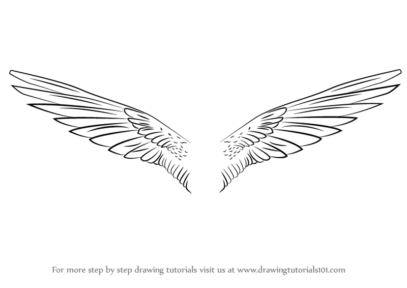 How to draw unicorn wings