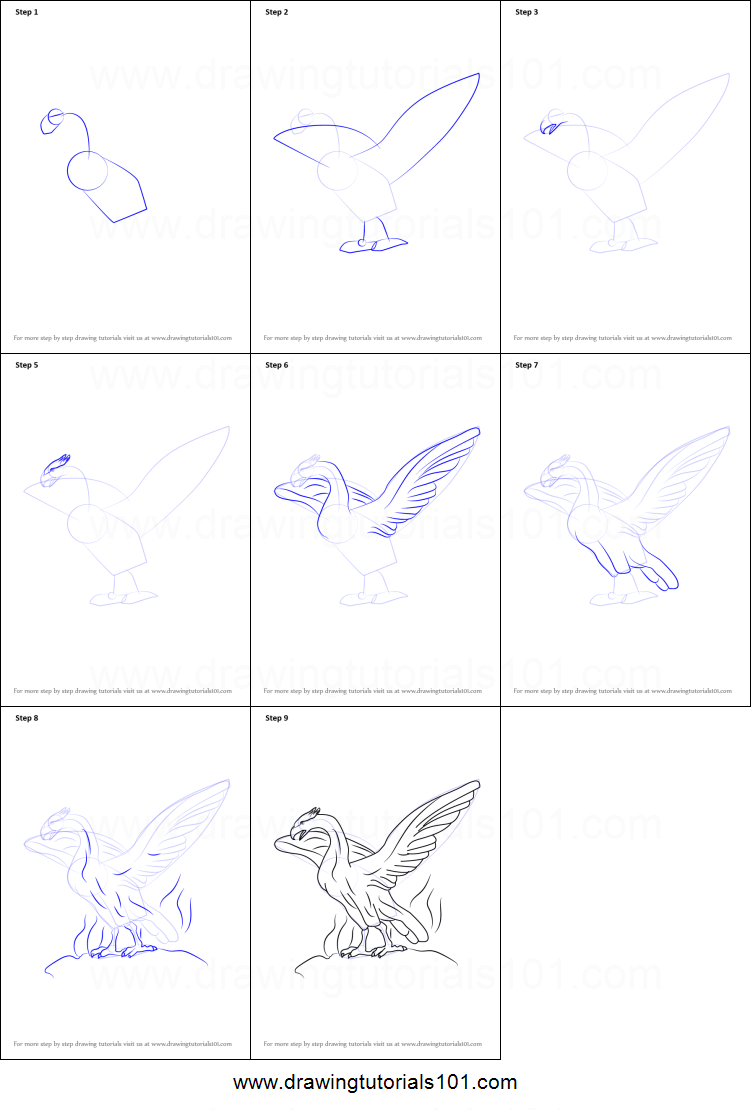 How to Draw Phoenix printable step by step drawing sheet