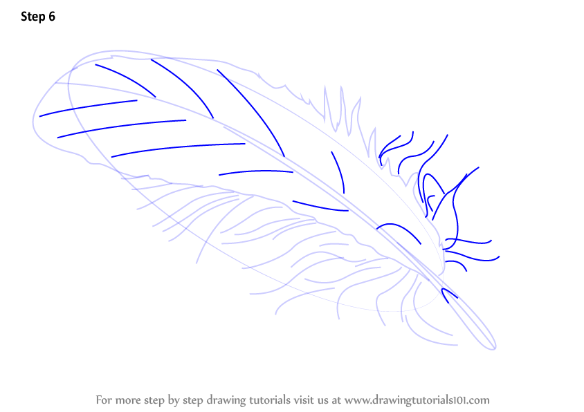 learn how to draw a feather  everyday objects  step by