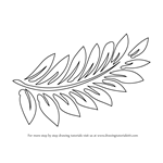 How to Draw Fern-fronds