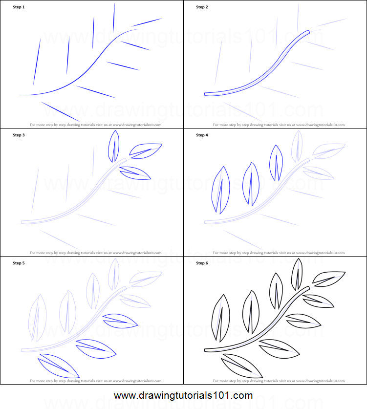 photo regarding Printable Draw named How toward Attract Fern Leaves printable phase as a result of phase drawing sheet
