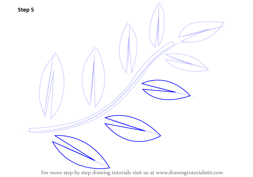Learn How to Draw Fern Leaves Plants