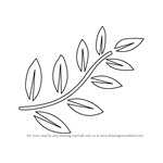How to Draw Fern Leaves