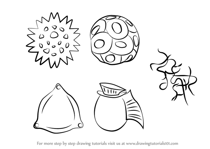 learn how to draw phytoplankton plants step by step drawing tutorials
