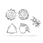 How to Draw Phytoplankton