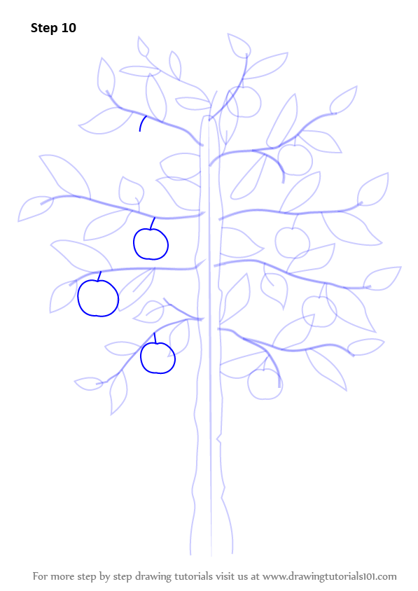 how to draw tree roots step by step