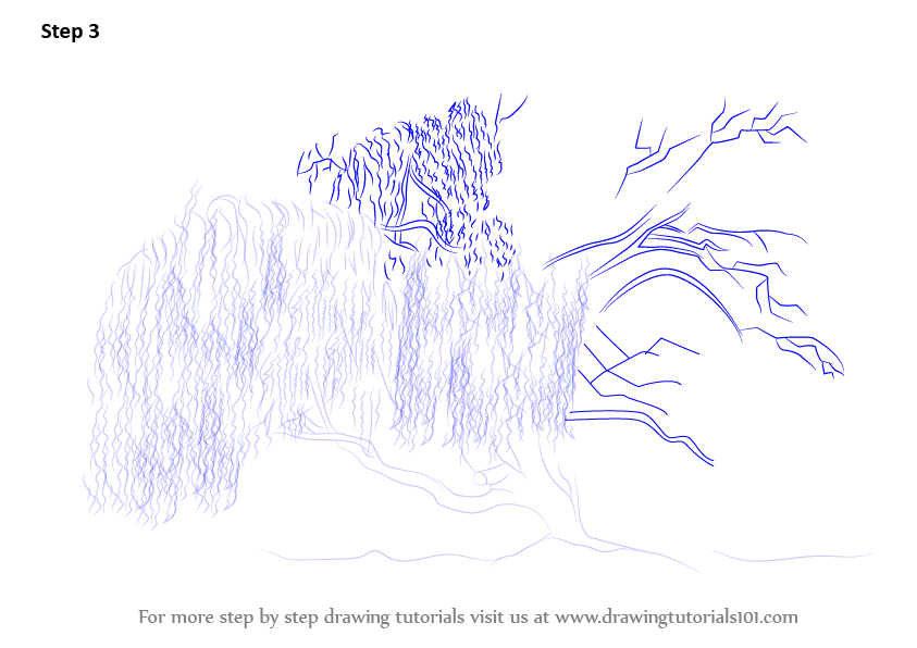 Learn to draw trees for kids