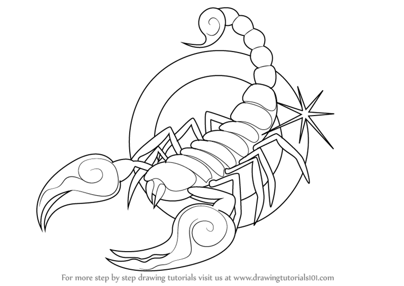 Learn How to Draw Scorpio Zodiac Sign (Zodiac Signs) Step by Step ...