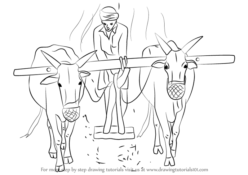 Learn how to draw a farmer working in the farm other for How to draw a farmhouse