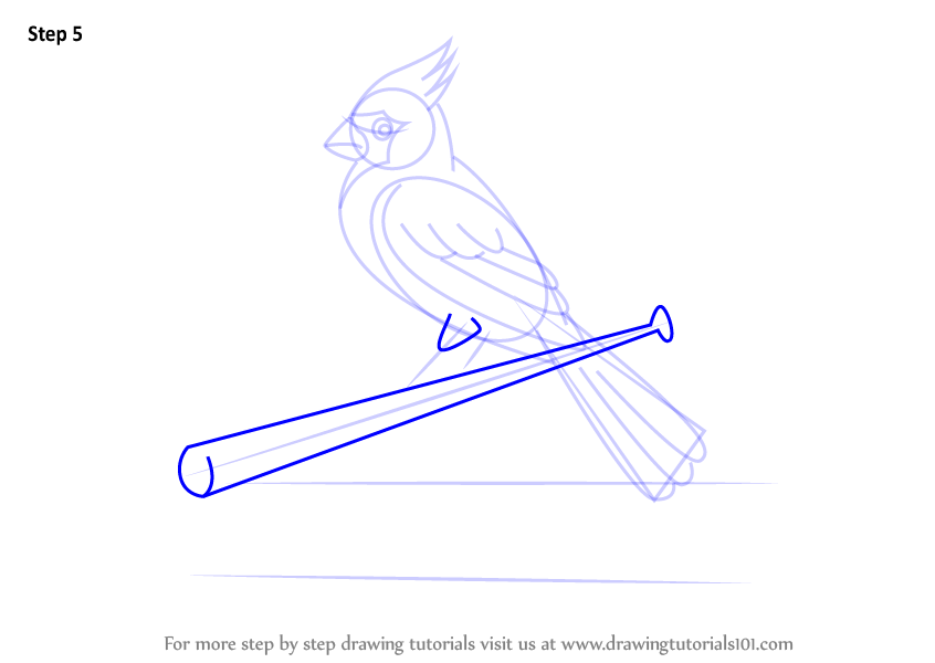 Learn How To Draw St Louis Cardinals Logo Mlb Step By Step