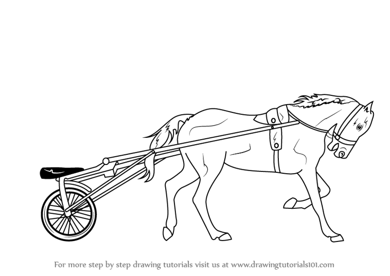Learn how to draw racing horse cart other sports step by step learn how to draw racing horse cart other sports step by step drawing tutorials ccuart Choice Image