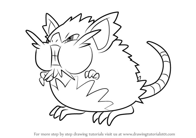 learn how to draw alola raticate from sun and moon