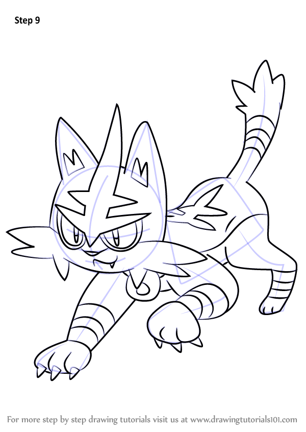 Learn How To Draw Torracat From Pokemon Sun And Moon