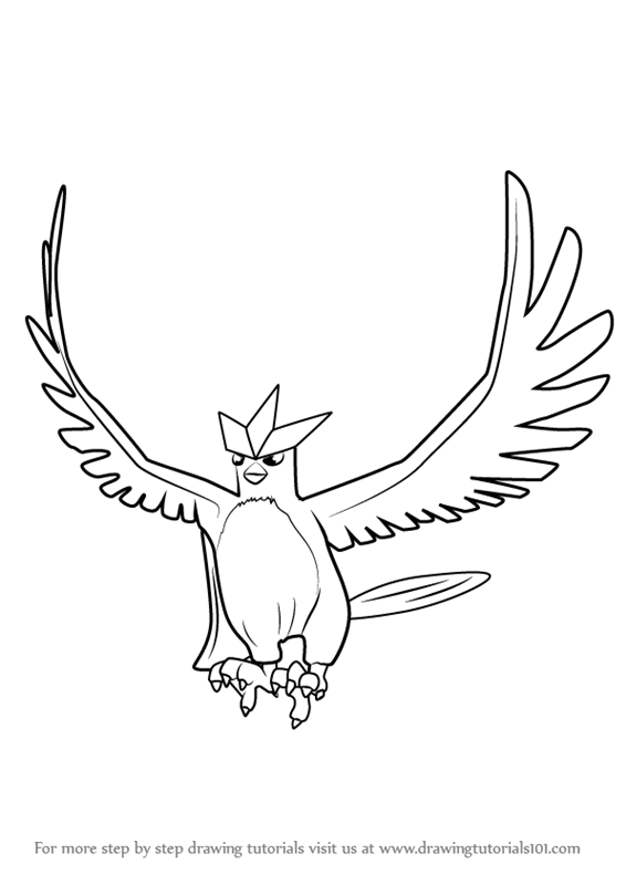 Learn How to Draw Articuno from